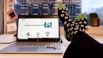 Sobolt socks